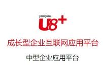 济南U8+ERP